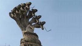Naga Boeddhabeelden