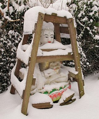 Buddha statue in crate
