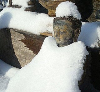 Buddha under the snow