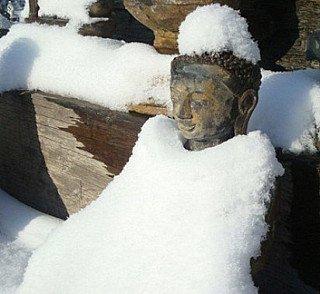 Boeddha onder de sneeuw