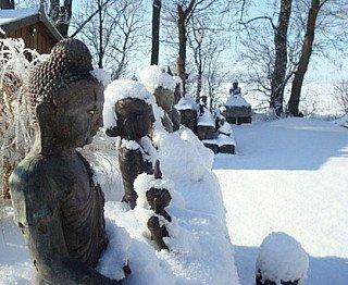 boeddhabeelden