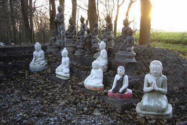 Buddha statues in garden