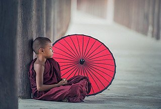 dharma-wheels-monk-with-umbrella