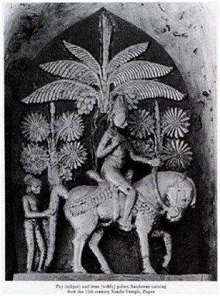 palm-leaf-story