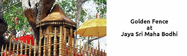 golden-fence-at-golden-temple