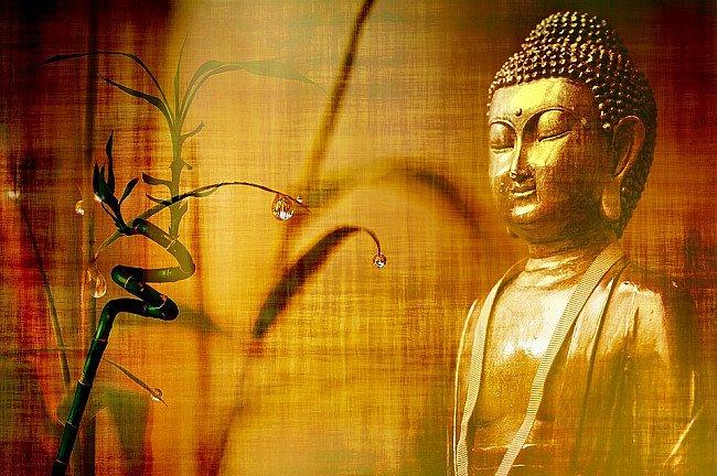 Buddha's Third eye