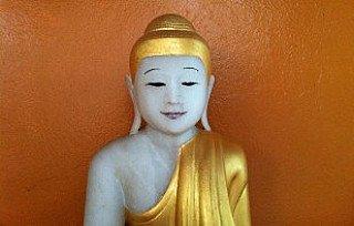 ears-of-the-buddha