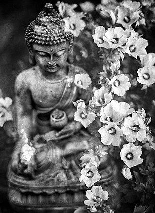 medicine buddha statues