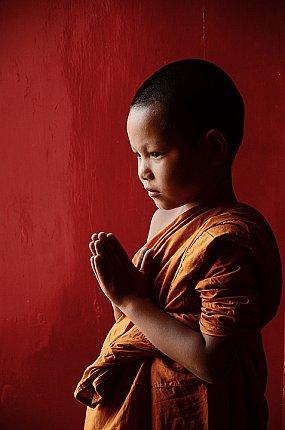 baby monk thailand