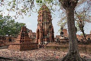 ayutthaya buddha statue