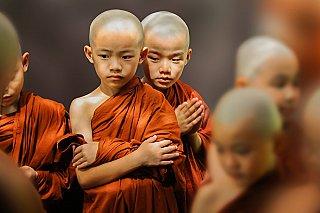 Sangha faith