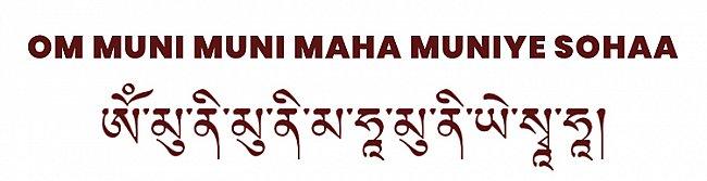 Om Muni Muni Maha Muniye Sohaa