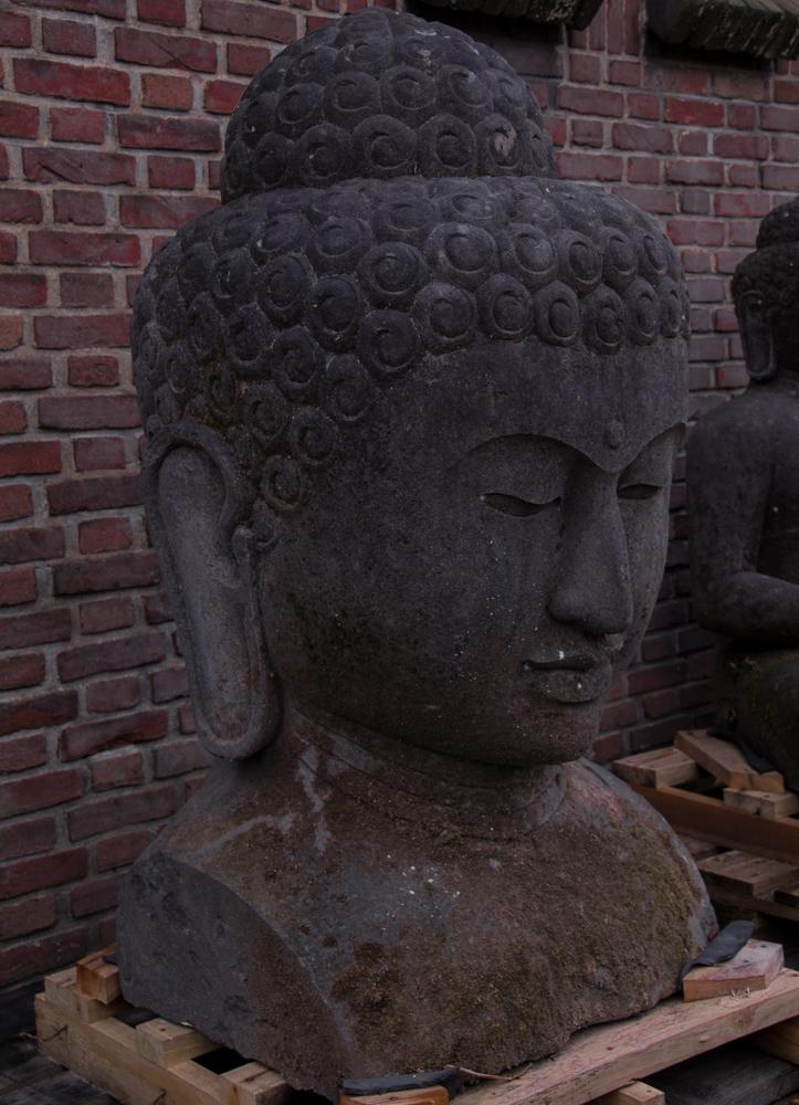 Large lavastone Buddha head