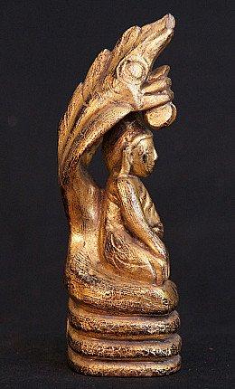 Buddha on Naga snake